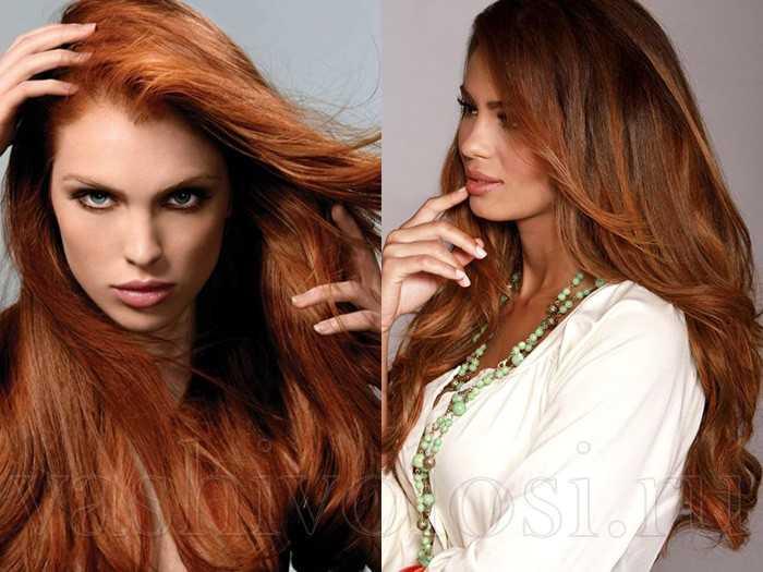 Цвет волос корица