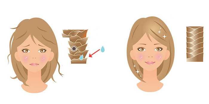 Почему нельзя оставлять волосы влажными