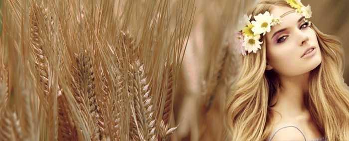 Волосы пшеничным цветам 16