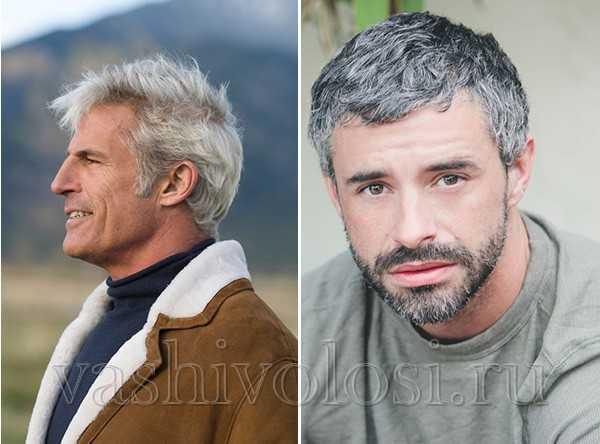 мужчины с красивыми седыми волосами