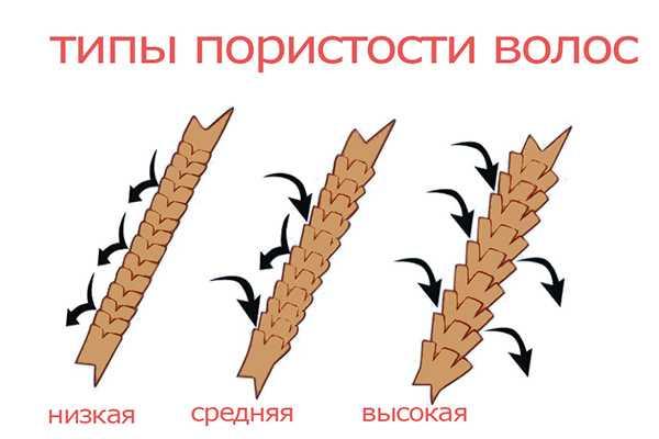 Какие бывают типы пористости волос