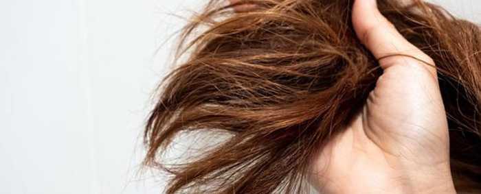 Все о пористости волос и почему это важно